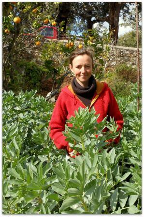 Les ateliers de jardinage biologiques gratuits