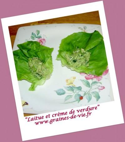 Laitue et crème de verdure