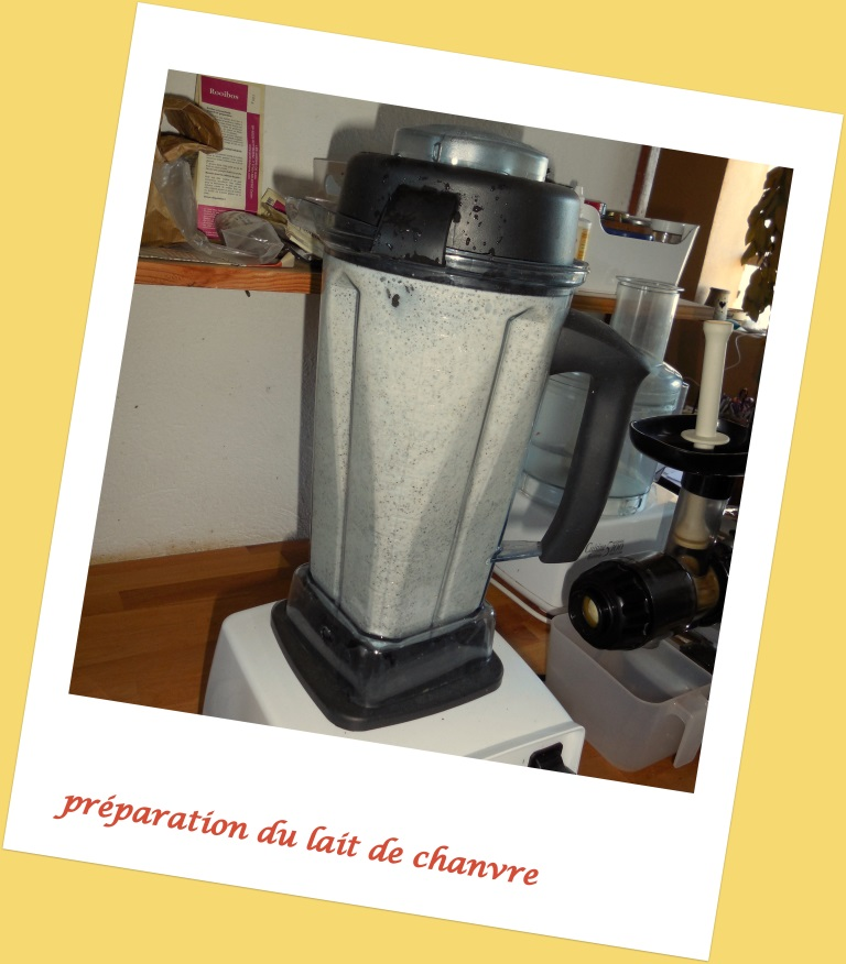 Lait de chanvre et smoothie tropical
