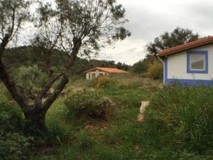 01_Habitat_arriere1