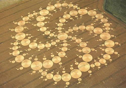Les Web circles de l'Oasis