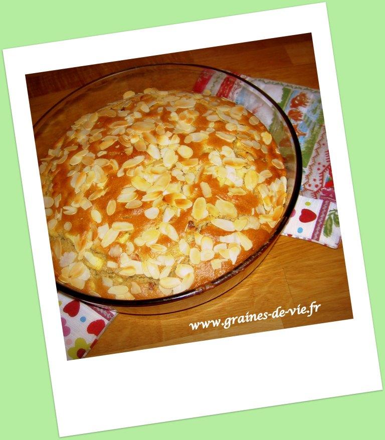 Gâteau sans gluten sans produits laitiers « pommes noisettes »