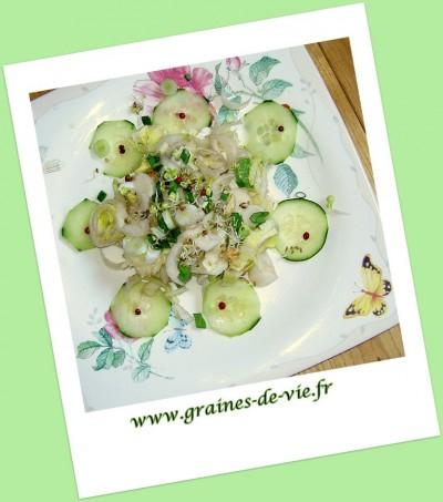 Salade endives, concombre et noix